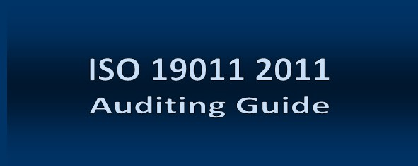 ISO 19011 Management System Auditing Library