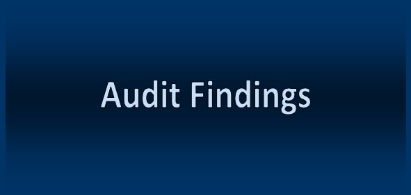 Audit Findings